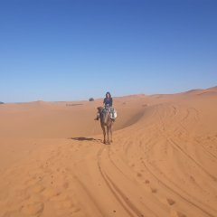 Отель Etoile Sahara Camp Марокко, Мерзуга - отзывы, цены и фото номеров - забронировать отель Etoile Sahara Camp онлайн приотельная территория фото 2