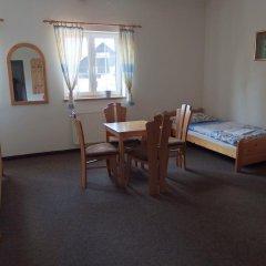 Отель Penzion U Studánky Чехия, Чодов - отзывы, цены и фото номеров - забронировать отель Penzion U Studánky онлайн детские мероприятия фото 2