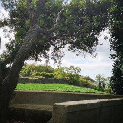 Отель Quinta das Camelias Понта-Делгада