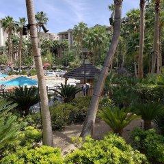 Отель Suites at the Tahiti Village США, Лас-Вегас - отзывы, цены и фото номеров - забронировать отель Suites at the Tahiti Village онлайн фото 5