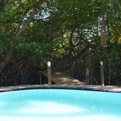 Отель Sethra Villas Шри-Ланка, Бентота - отзывы, цены и фото номеров - забронировать отель Sethra Villas онлайн бассейн