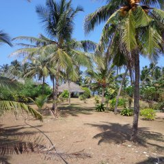 Hotel Star White Negombo пляж