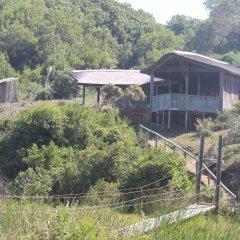 Отель Oyster Bay Lodge бассейн