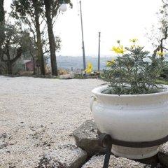 Отель La Dolce Casetta Италия, Гроттаферрата - отзывы, цены и фото номеров - забронировать отель La Dolce Casetta онлайн бассейн