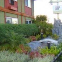 Отель Royal Pagoda Motel фото 4
