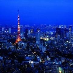 Отель The Ritz Carlton Tokyo Токио балкон