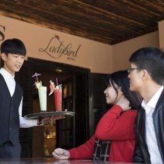 Отель Ladybird Sapa Hotel Вьетнам, Шапа - отзывы, цены и фото номеров - забронировать отель Ladybird Sapa Hotel онлайн гостиничный бар