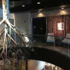 Отель Crowne Plaza Los Angeles-Commerce Casino интерьер отеля фото 3