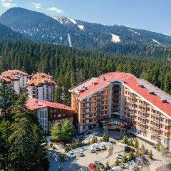 Отель Flora hotel apartments Болгария, Боровец - отзывы, цены и фото номеров - забронировать отель Flora hotel apartments онлайн