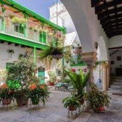 Отель Apartamentos Jerez Испания, Херес-де-ла-Фронтера - отзывы, цены и фото номеров - забронировать отель Apartamentos Jerez онлайн фото 28