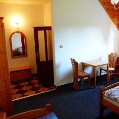Отель Penzion U Studánky Чехия, Чодов - отзывы, цены и фото номеров - забронировать отель Penzion U Studánky онлайн комната для гостей фото 2