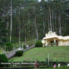 Отель Heaven Seven Nuwara Eliya Шри-Ланка, Нувара-Элия - отзывы, цены и фото номеров - забронировать отель Heaven Seven Nuwara Eliya онлайн помещение для мероприятий фото 2