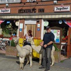 Отель Elckerlyck Inn Hotel Бельгия, Кортрейк - отзывы, цены и фото номеров - забронировать отель Elckerlyck Inn Hotel онлайн