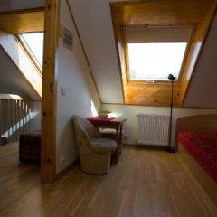 Отель Love Island Guesthouse Литва, Друскининкай - отзывы, цены и фото номеров - забронировать отель Love Island Guesthouse онлайн комната для гостей фото 5