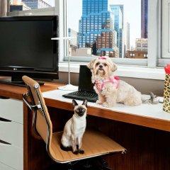 Отель DoubleTree by Hilton Metropolitan - New York City США, Нью-Йорк - 9 отзывов об отеле, цены и фото номеров - забронировать отель DoubleTree by Hilton Metropolitan - New York City онлайн с домашними животными