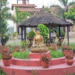 Отель Chitwan Adventure Resort Непал, Саураха - отзывы, цены и фото номеров - забронировать отель Chitwan Adventure Resort онлайн фото 22