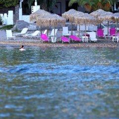 Отель Panorama Apartments Греция, Порос - 1 отзыв об отеле, цены и фото номеров - забронировать отель Panorama Apartments онлайн помещение для мероприятий фото 2