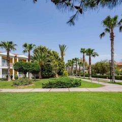 Отель Euphoria Palm Beach Resort фото 11