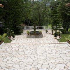 Отель Hacienda La Esperanza Гондурас, Копан-Руинас - отзывы, цены и фото номеров - забронировать отель Hacienda La Esperanza онлайн фото 3