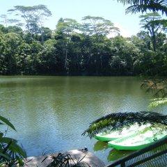 Отель Colo-I-Suva Rainforest Eco Resort Вити-Леву приотельная территория
