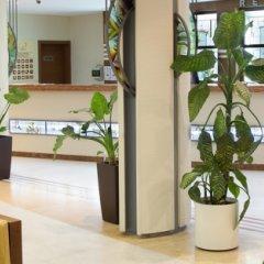 Отель Комплекс Райский сад Болгария, Свети Влас - отзывы, цены и фото номеров - забронировать отель Комплекс Райский сад онлайн фото 10