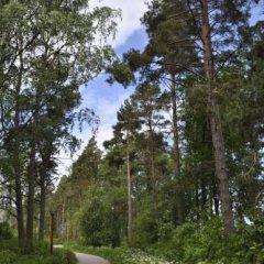 Отель Kiurun Villas Финляндия, Лаппеэнранта - 1 отзыв об отеле, цены и фото номеров - забронировать отель Kiurun Villas онлайн фото 7