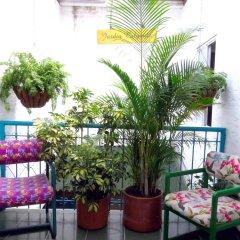 Отель Hostal Pajara Pinta балкон