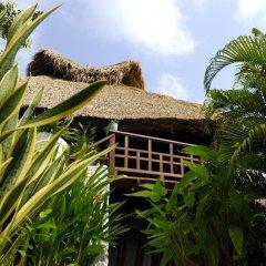 Отель Thipwimarn Resort Koh Tao Таиланд, Остров Тау - отзывы, цены и фото номеров - забронировать отель Thipwimarn Resort Koh Tao онлайн фото 8