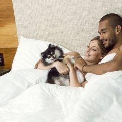 Отель Andaz Costa Rica Resort at Peninsula Papagayo-a concept by Hyatt с домашними животными