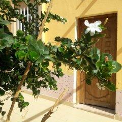 Darna Village Beach Hostel интерьер отеля