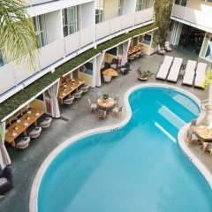 Отель Avalon Hotel Beverly Hills США, Беверли Хиллс - отзывы, цены и фото номеров - забронировать отель Avalon Hotel Beverly Hills онлайн бассейн фото 3
