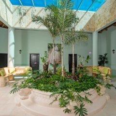 Отель Ocean Blue & Beach Resort - Все включено Доминикана, Пунта Кана - 8 отзывов об отеле, цены и фото номеров - забронировать отель Ocean Blue & Beach Resort - Все включено онлайн
