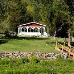 Отель Tioga Lodge at Mono Lake США, Ли Вайнинг - отзывы, цены и фото номеров - забронировать отель Tioga Lodge at Mono Lake онлайн фото 12