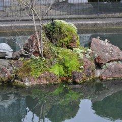 Отель Apa Toyama - Ekimae Тояма приотельная территория фото 2