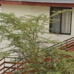 Отель Sentrim Elementaita Lodge Кения, Накуру - отзывы, цены и фото номеров - забронировать отель Sentrim Elementaita Lodge онлайн фото 3