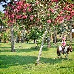 Отель Gloria Serenity Resort - All Inclusive детские мероприятия фото 2