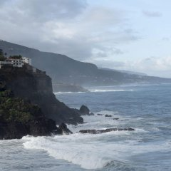 Maritim Hotel Tenerife с домашними животными