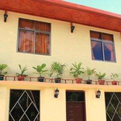 Отель Гостевой Дом Holiday Mathiveri Inn Мальдивы, Мадивару - отзывы, цены и фото номеров - забронировать отель Гостевой Дом Holiday Mathiveri Inn онлайн фото 6