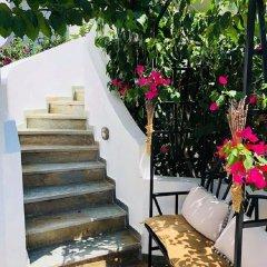 Отель Nontas Hotel Греция, Агистри - отзывы, цены и фото номеров - забронировать отель Nontas Hotel онлайн фото 10