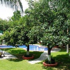 Áurea Hotel & Suites фото 6