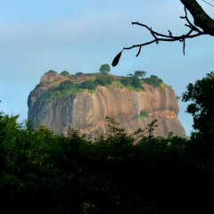 Отель Sigiriya Village фото 3