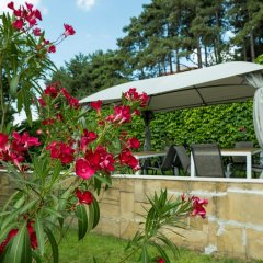 Отель Milennia Family Hotel Болгария, Солнечный берег - отзывы, цены и фото номеров - забронировать отель Milennia Family Hotel онлайн фото 6