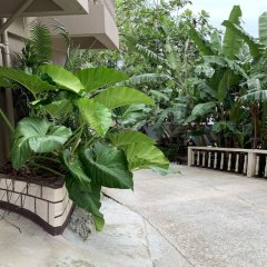Отель Yvonne's Hotel Федеративные Штаты Микронезии, Понпеи - отзывы, цены и фото номеров - забронировать отель Yvonne's Hotel онлайн фото 13