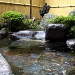 Отель Oyado Sakuratei Хидзи фото 6
