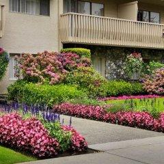 Отель Royal Scot Hotel & Suites Канада, Виктория - отзывы, цены и фото номеров - забронировать отель Royal Scot Hotel & Suites онлайн фото 6