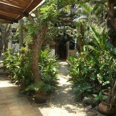 Отель Caribbean Coral Inn Tela Гондурас, Тела - отзывы, цены и фото номеров - забронировать отель Caribbean Coral Inn Tela онлайн фото 3