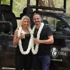 Отель Mahoora Tented Safari Camp All-Inclusive - Yala гостиничный бар