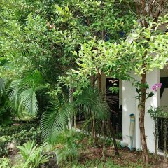 Отель The Krabi Forest Homestay фото 18
