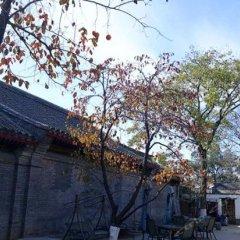 Отель Courtyard 7 Пекин фото 4