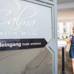Отель Calma Berlin Mitte Берлин городской автобус
